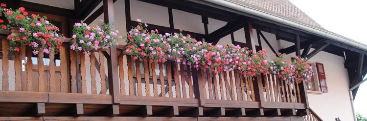 Balcon Gîte- Vins Alsace Froehlich - Haut-Rhin Ostheim